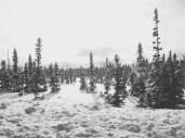 Trans Labrador Highway 1