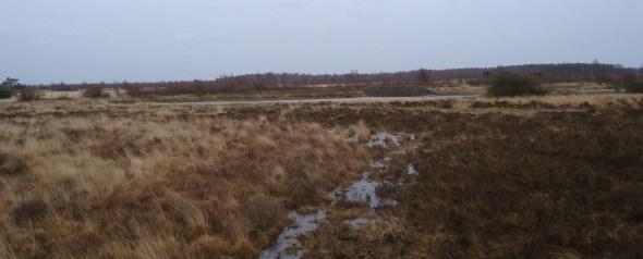 Nationaal Park Groote Peel
