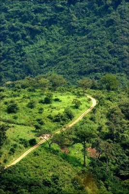 Herrlich gruene Landschaft