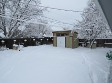 Matt's backyard - with snow!