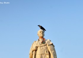Coronation Park: The King… and the Crow