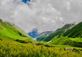 Valley Of Flowers and Hemkund Sahib: DIY Budget Travel Guide