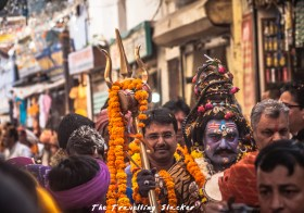Pushkar Fair: A Thousand Camels and a near Stampede