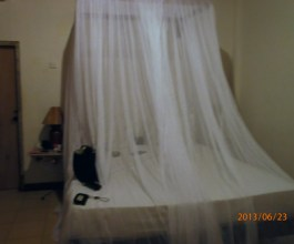 My first ever mosquito net.