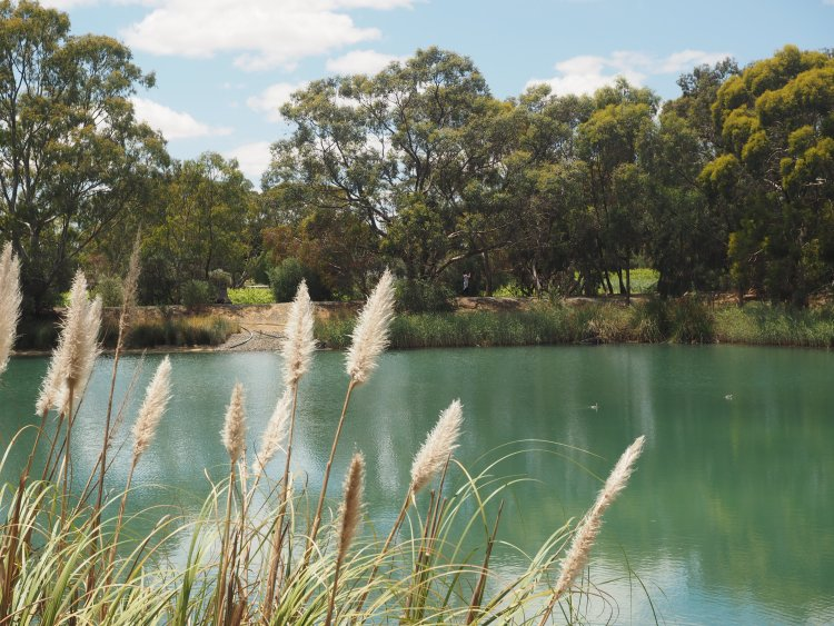 maggie-beer-barossa-south-australia