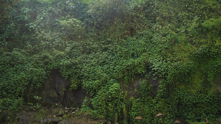 tegenungan-waterfall-bali-ubud