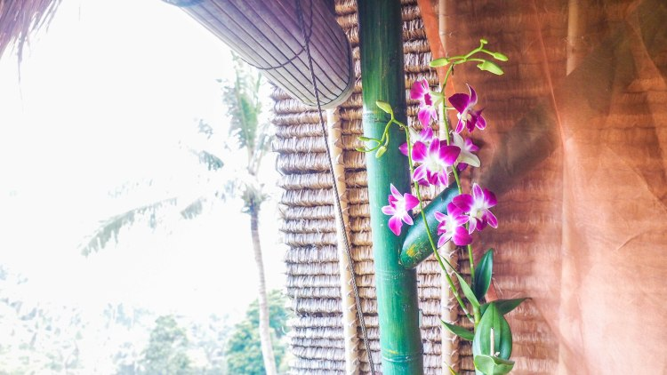 bali-ubud-travel-blog-jungle-retreat-kupu-kupu-barong-luxury-backpacking-solo