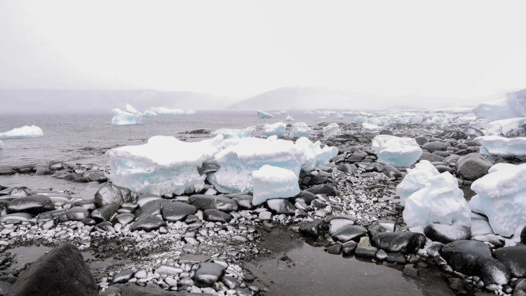 antarctica-travel-blog-solo-oceanwide-expeditions-ortelius-jougla-point-seventh-continent