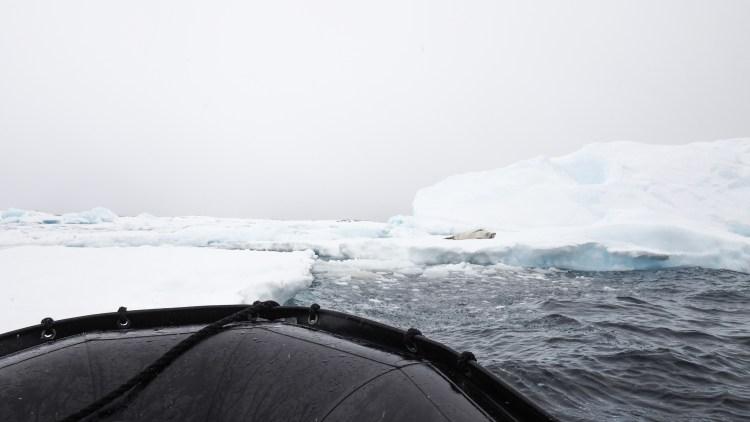 port-charcot-antarctica-travel-blog-solo-oceanwide-expeditons