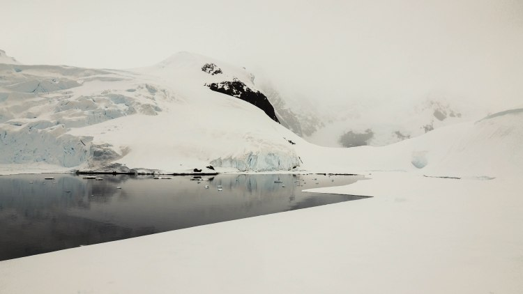 base-brown-antarctica-travel-blog-solo-oceanwide-expeditions-ortelius-seventh-continent-research