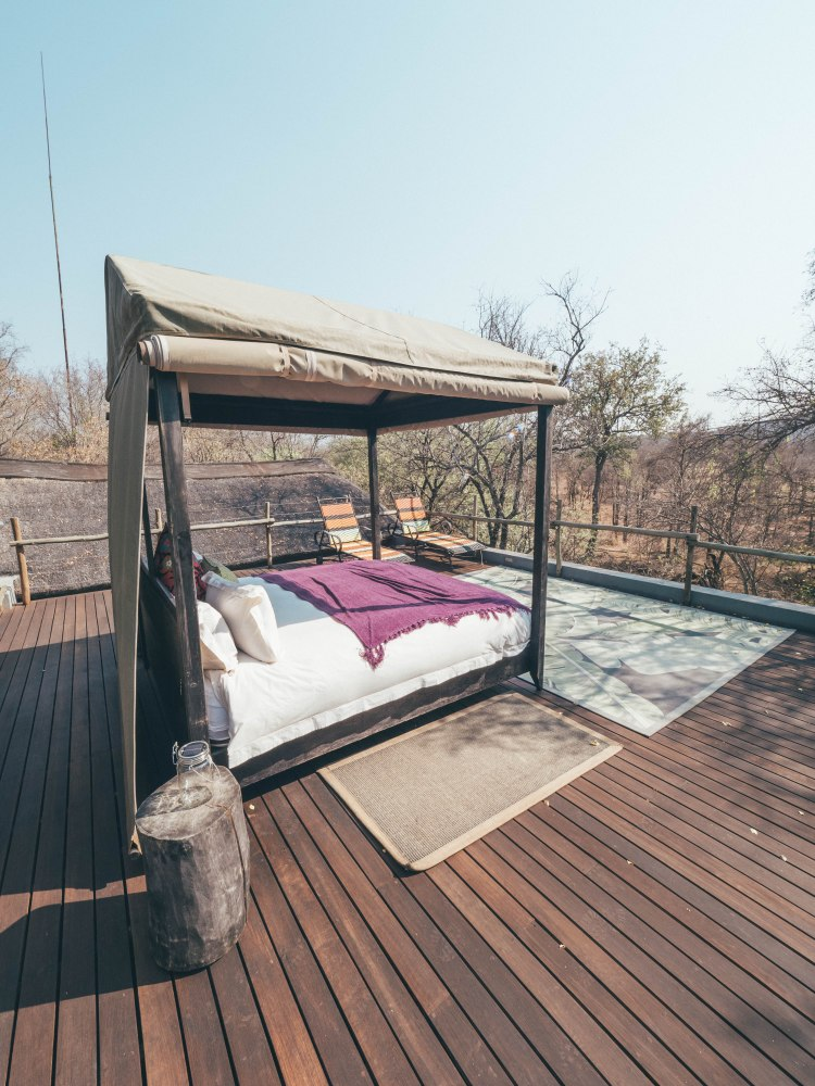 jacis-safari-travel-blog-lodge-south-africa-travelling-the-world-solo-madikwe