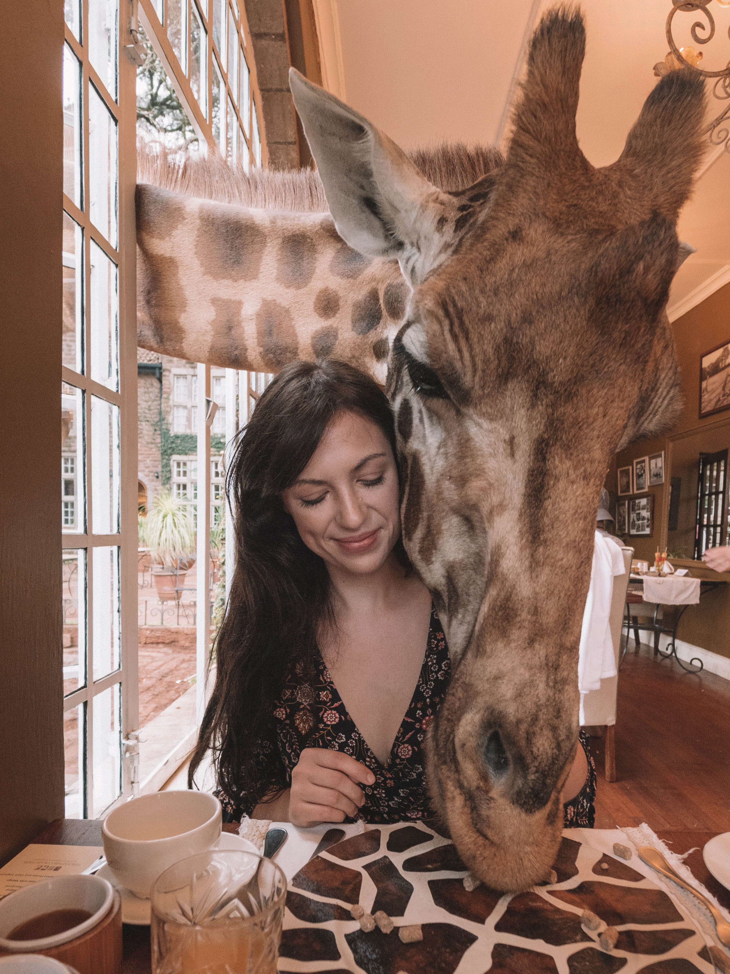 giraffe-manor-travel-blog-nairobi-kenya-solo-travelling-the-world