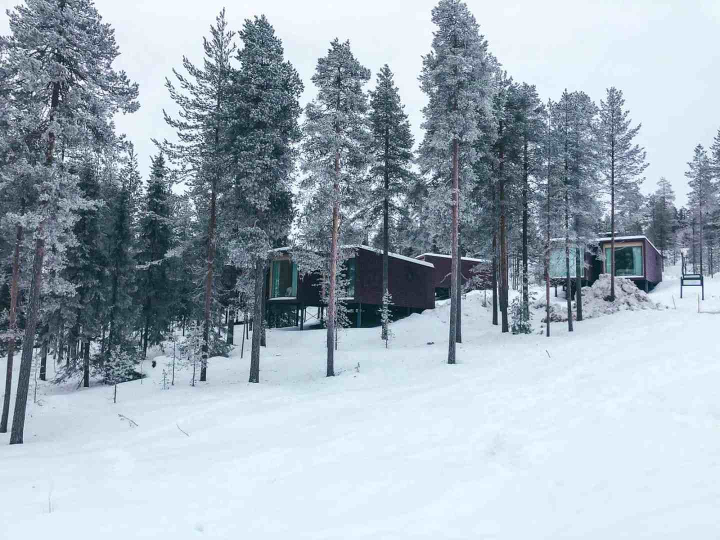 Rectangle rooms in the snow surrounded by trees