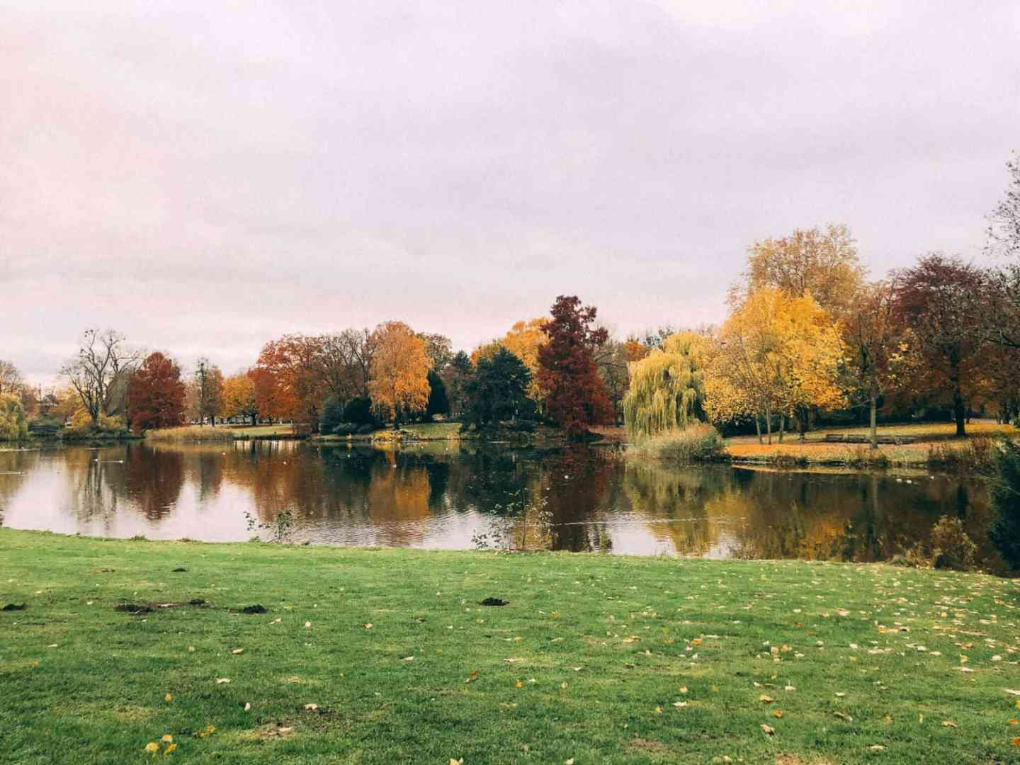 A park with a lake in the middle and autumn coloured trees on the other side of the lake