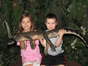 Florida gator Ana and Rafa cropped