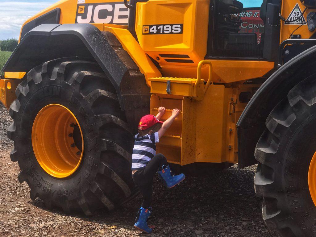 Dexter climbing a JCB on Taylor's farm on leaf Open farm Sunday