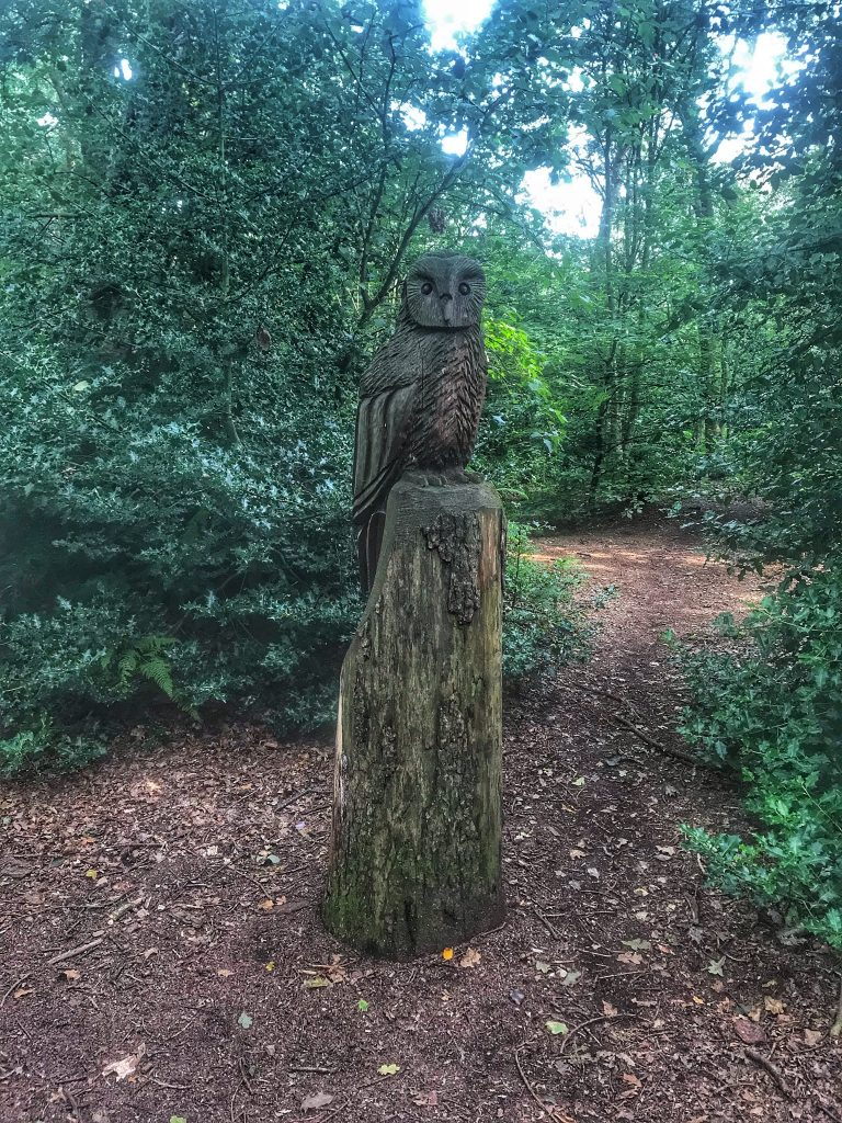 Carved wooden owl sat atop a tree trunk in ruff Wood