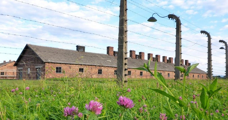 Visiting Auschwitz and Birkenau – A day for reflections