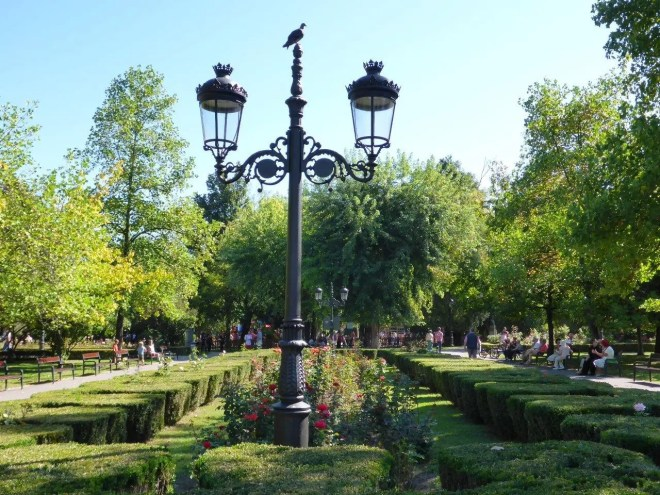 The park in Brasov