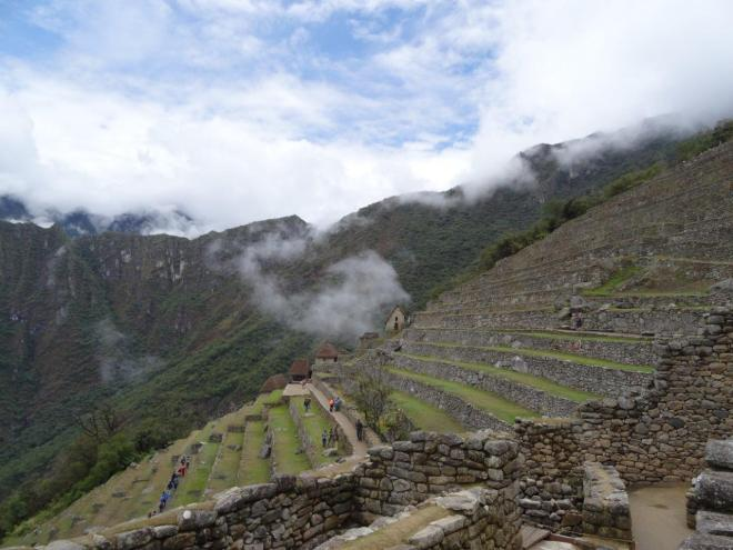 Just a few of the terraces in Machu Picchu, Peru.