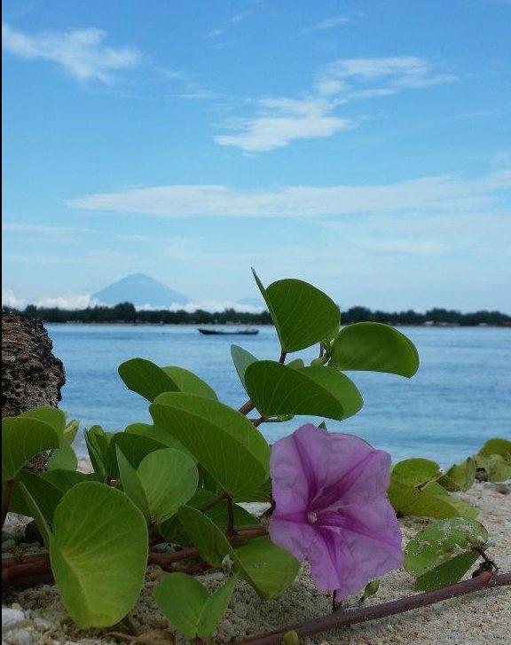 Bali volcano view. Gili Meno island, Indonesia