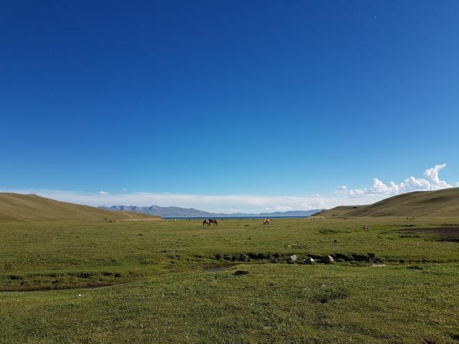 Idyllic life by the lake. Three day horse-riding trip to Song Kul, Kyrgyzstan.
