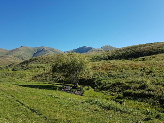 Lush green landscape. Three day horse-riding trip to Song Kul, Kyrgyzstan.
