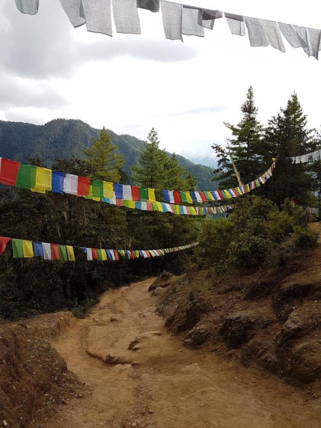 Long rows of prayer flags all along the track to Tiger's Nest. Paro Taktsang. Bhutan.