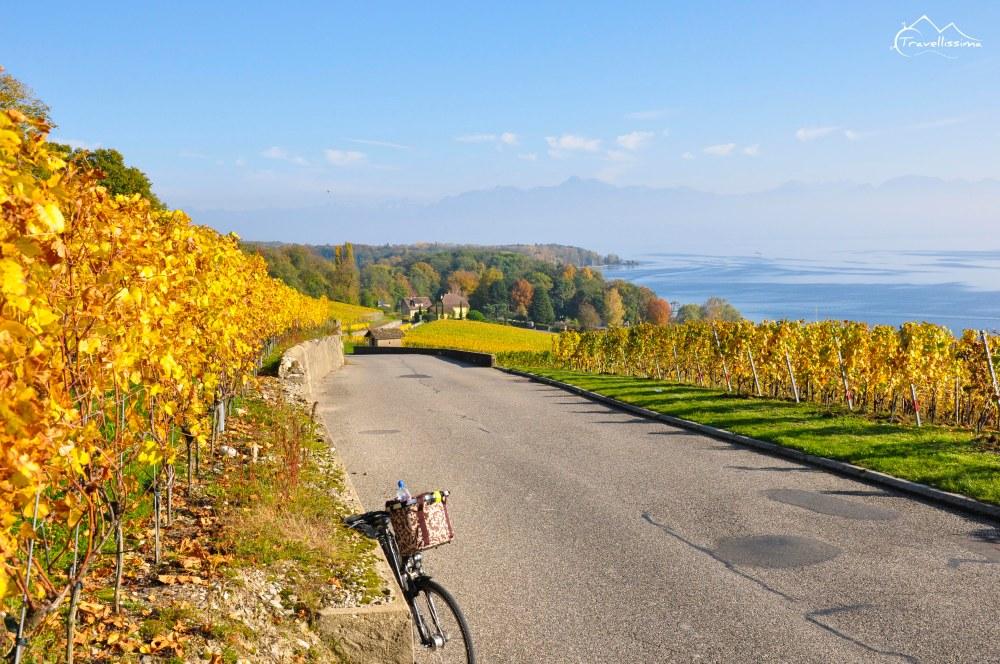 Lake_Geneva_Switzerland_Anna_Kedzierska-0607