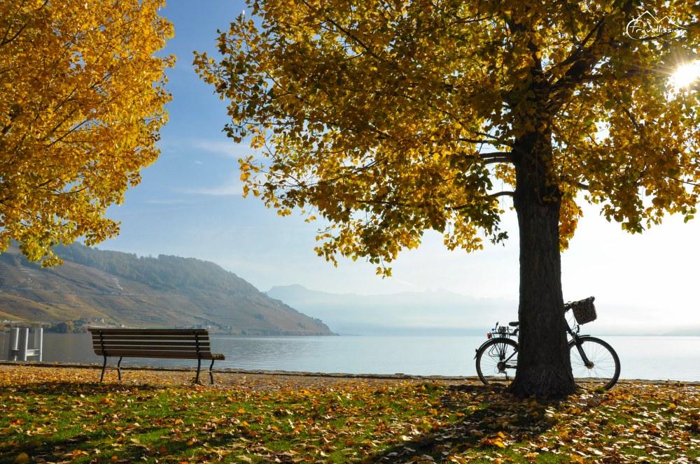 cycling_Switzerland_Anna_Kedzierska-0527