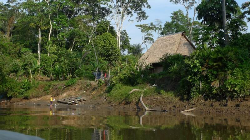 P1010577 - House on Amazon