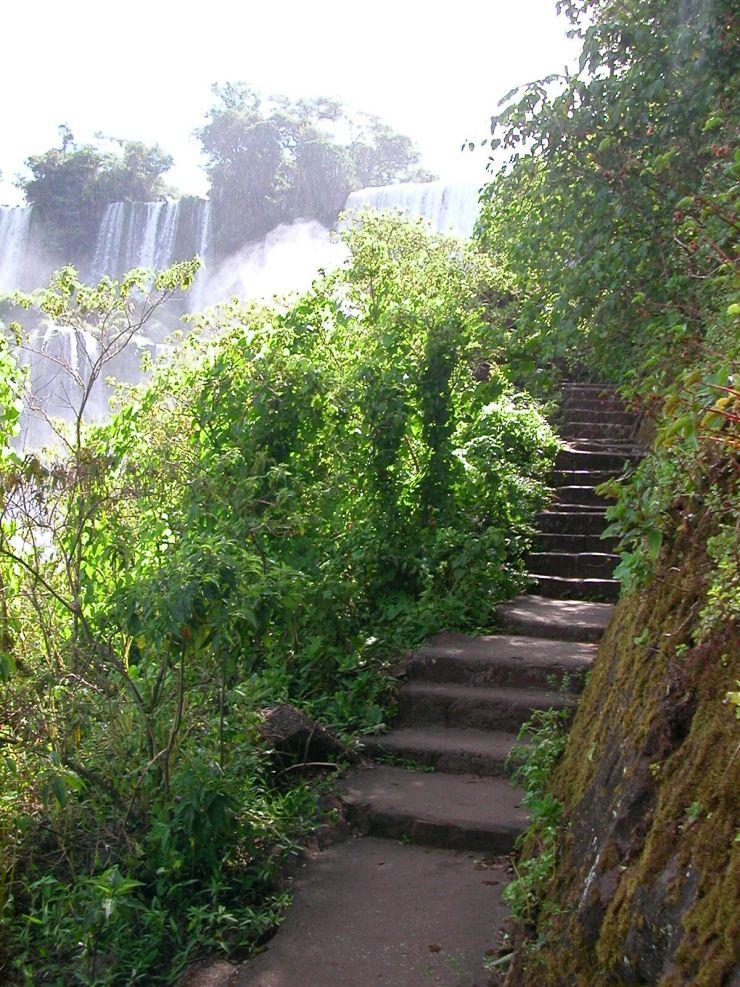 Argentina (115) Iguazu Path