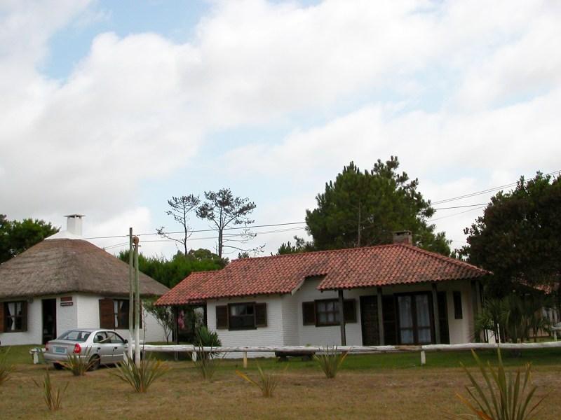 Argentina (481)
