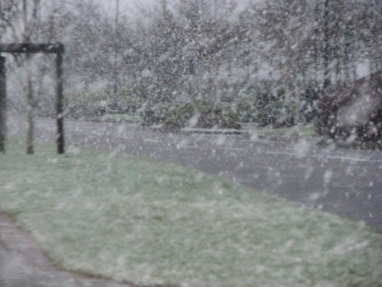 1297 Snow~
