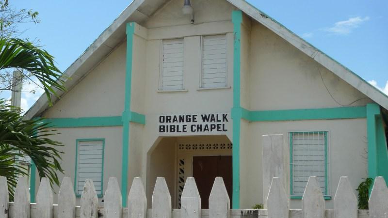 P1070419 Orange Walk~