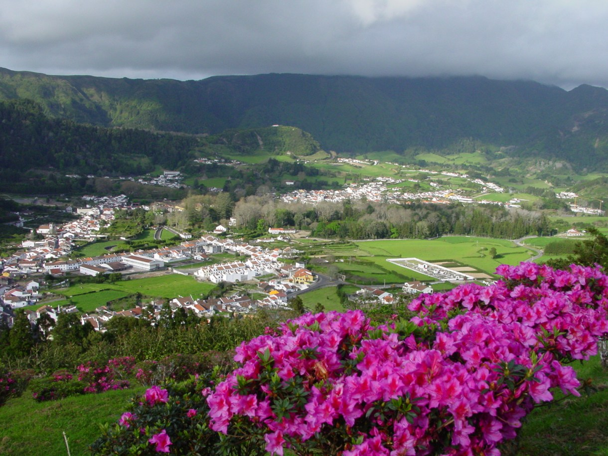 Volcanic Valley W Lake, Town, Flowers