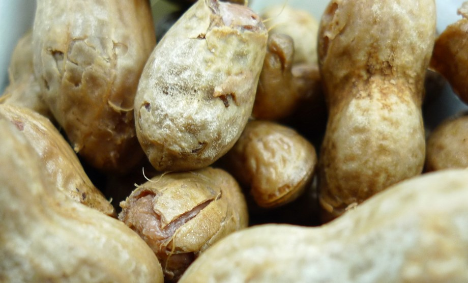 P1110317 Hot Boiled Peanuts