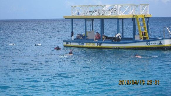观海龟的浮潜游客