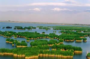 沙湖风景区