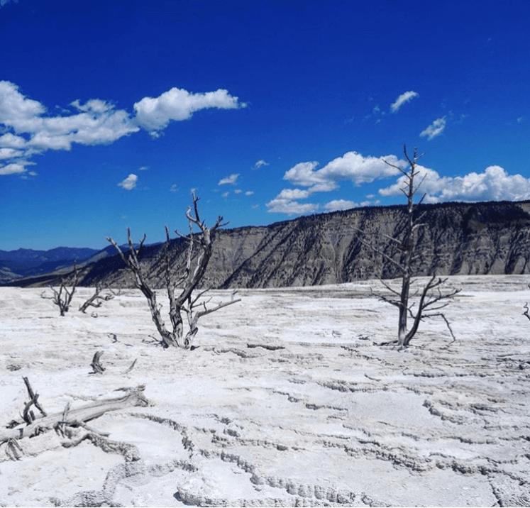 Yellowstone, Amerika