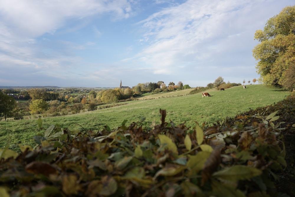 Trage Tocht Vijlen Zuid-Limburg Nederland