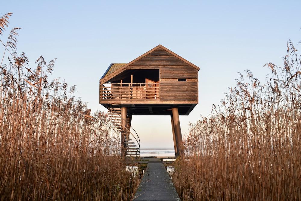 Vogelkijkhut de Kiekkaaste Dollard Groningen