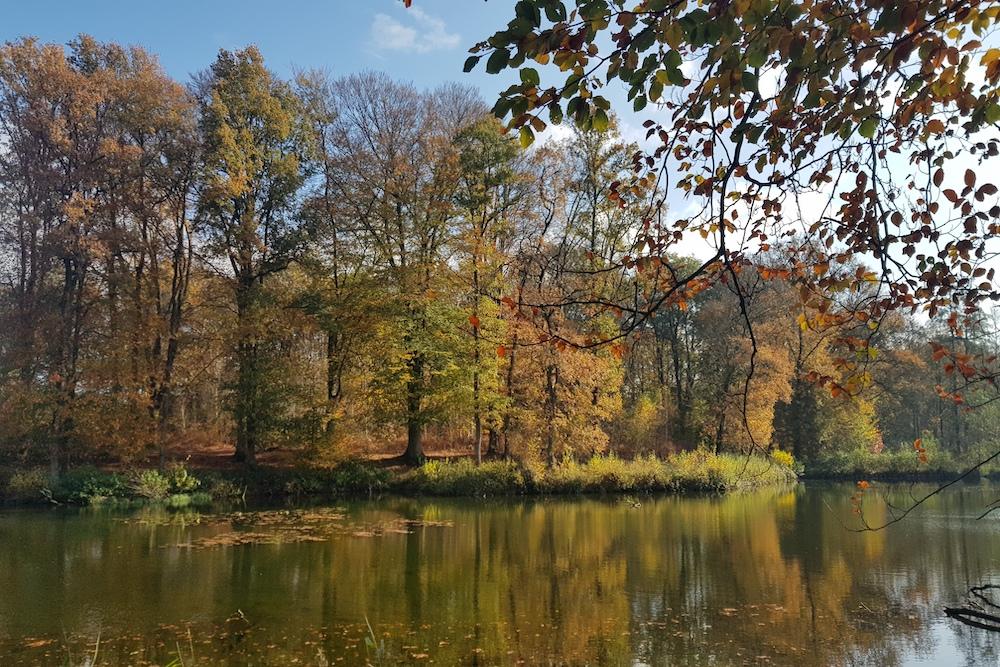 Wandelen in het Springendal Twente