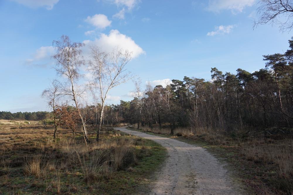 Nationaal Park De Loonse en Drunense Duinen wandelroutes