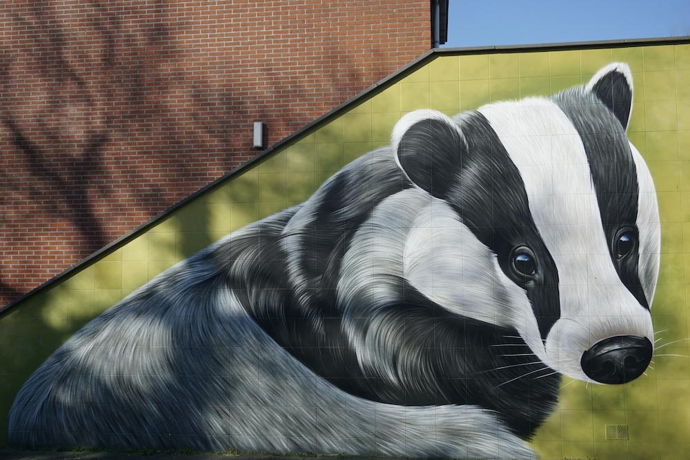 Street art winkelcentrum Dashof Delft
