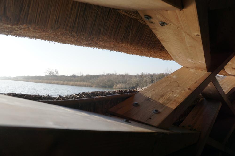 Uitzicht vogelobservatorium Tij over Haringvliet en natuurgebied Scheelhoek
