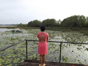 Ruskin Island, Bolgoda Lake