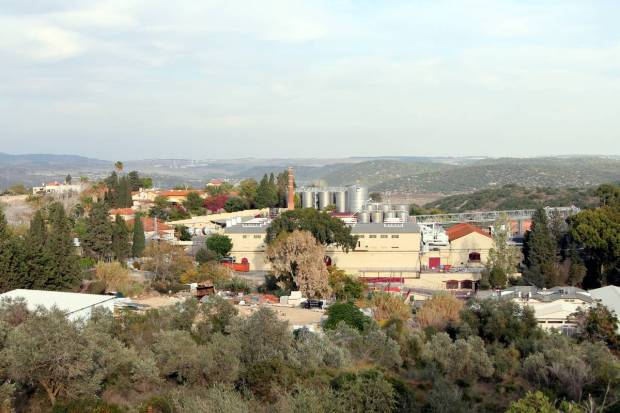 Carmel Winery, Zichron Yaakov, Israel