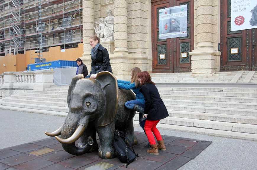 natural-history-museum-vienna-2493