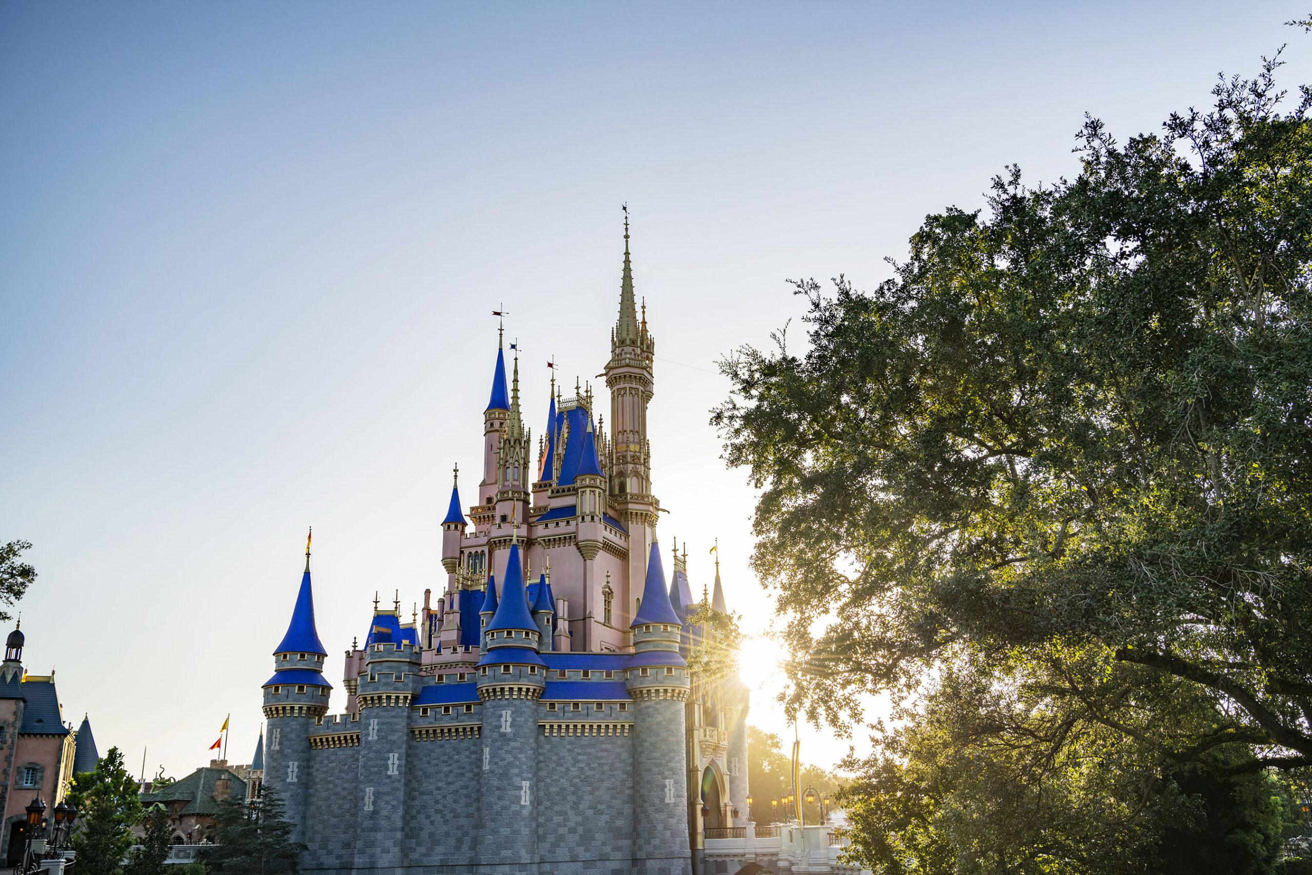Walt Disney World Resort in Lake Buena Vista, Fla., is The Most Magical Place on Earth to kick off 2021. (Matt Stroshane, photographer)